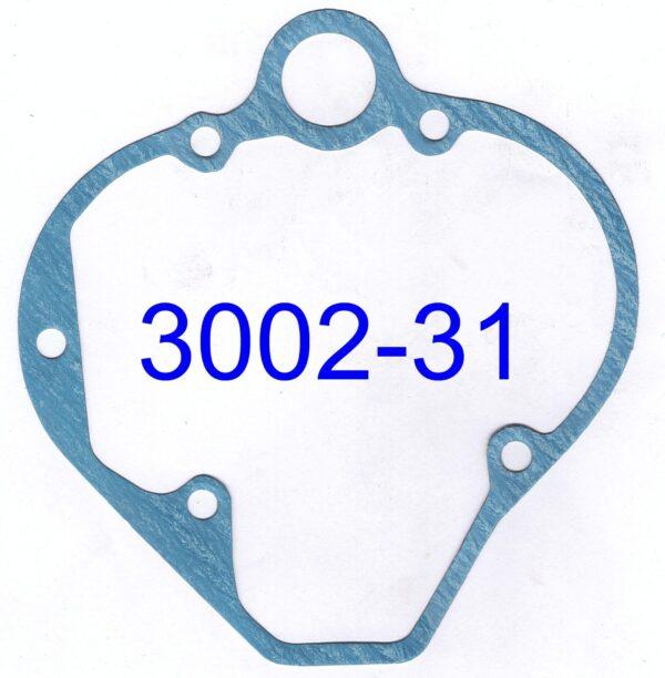 3002-31