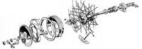 Rear Wheel (not TR5T)
