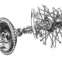 QD Rear Wheel